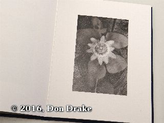 'Passion Flower', image 2 in Kate Jordahl's and Don Drake's One Poem Book, End